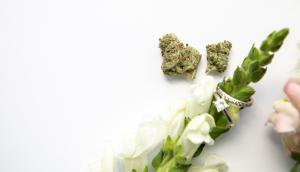 Cannabis Wedding